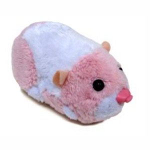 Jilly la hamster citadine