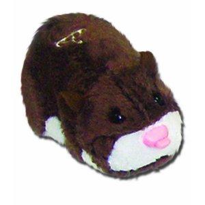Scoodles le hamster marron