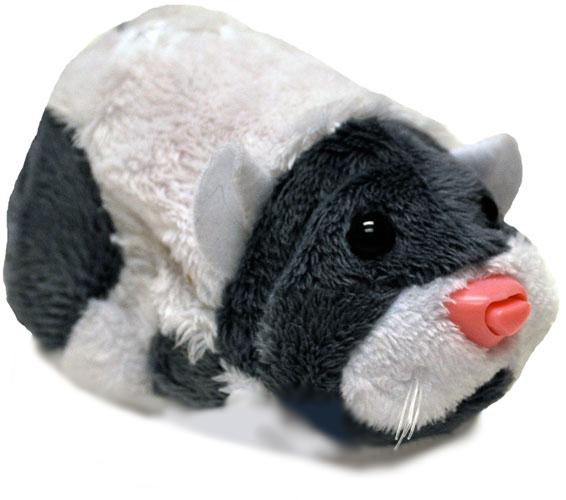 hamster Jinx zouzou pet
